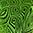 14 Flourescent Green color